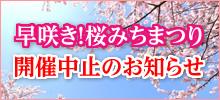 早咲き!桜みちまつり開催中止のお知らせ